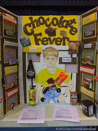 Reading Fair Projects- instead of science fair or just as a class project