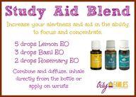 Study Aid Blend - Le