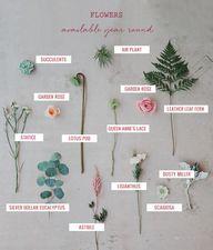 Seasonal Flower Guid
