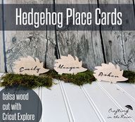 Wood Hedgehog Place