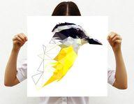 A new slant on bird-