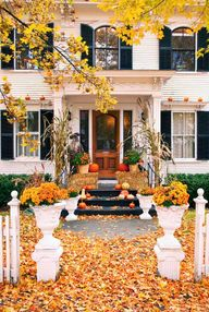 Beautiful Fall entri