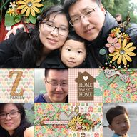 Z family Year in rev
