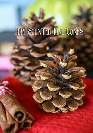 DIY Scented Pine Con