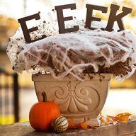 Spooky Front Door Pl