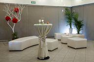Salones Hotel Viva V