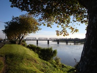 Wanganui morning