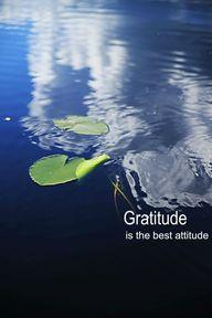 Gratitude is the bes