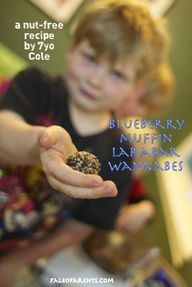 Blueberry Muffin Lar