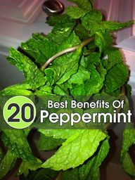 20 Best Benefits Of
