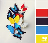 {butterfly color} vi
