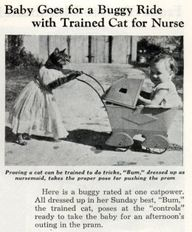 August 1938: Baby go