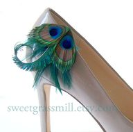Peacock Shoe Clips