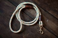 Rope & Leather Dog L