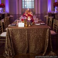 Sequin Linen  Photo