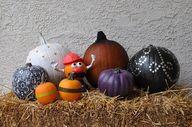 pumpkin decorating i