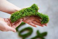 La Green Guérilla, i