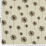 Brown Dandelions on