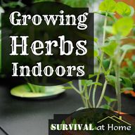Tips for herb garden