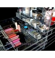 Icebox makeup organi