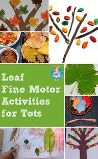 Leaf activities, cra