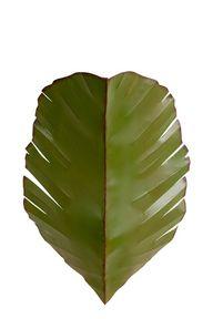 Banana Leaf Wall Sco