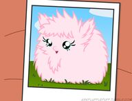 Ask Fluffle Puff - ""