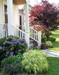 Mature plantings add