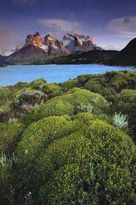 Cuernos del Paine at