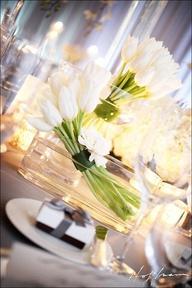 White Tulip Centerpi