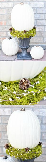 DIY White Pumpkin To