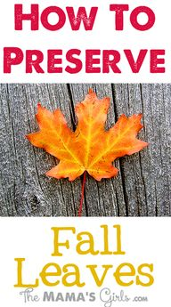 How to Preserve Fall