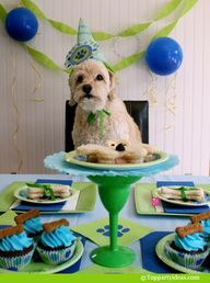 Dog Party Ideas - Do