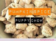 Pumpkin Spice Puppy