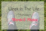 Week in the Life | M