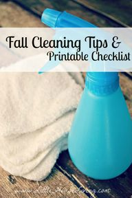 Fall Cleaning Tips &