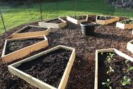 Raised garden beds p