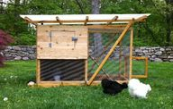 tiny coop to build f