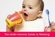 Smart Mommy guide to