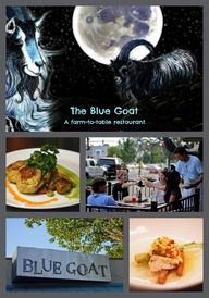 The Blue Goat @blueg