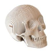 Vince Human Skull SE