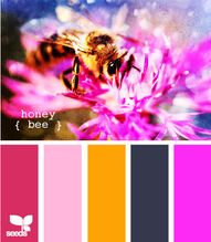 Honey Bee - http://d