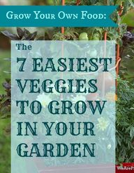 Grow Your Own Food: