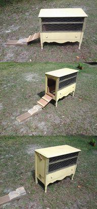 Chicken coop repurpo
