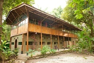 The Jungle House Vil
