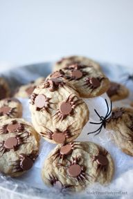Chocolate Chip Spide