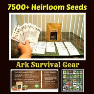 ► ►  ► Ark Survival