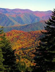 Fall color along the