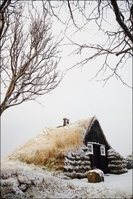 Cottage in snow, Ice