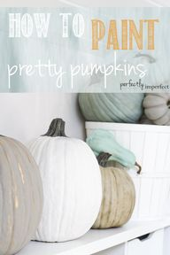Cute pumpkins for yo